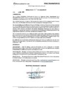 Resolución de Presidencia Ejecutiva N°007-2019-MML/IMPL/PE
