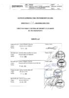 Directiva 011-2010 MML IMPL OPSI.